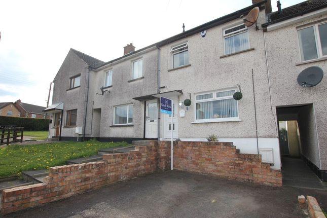 Thumbnail Terraced house for sale in Oak View, Templepatrick, Ballyclare