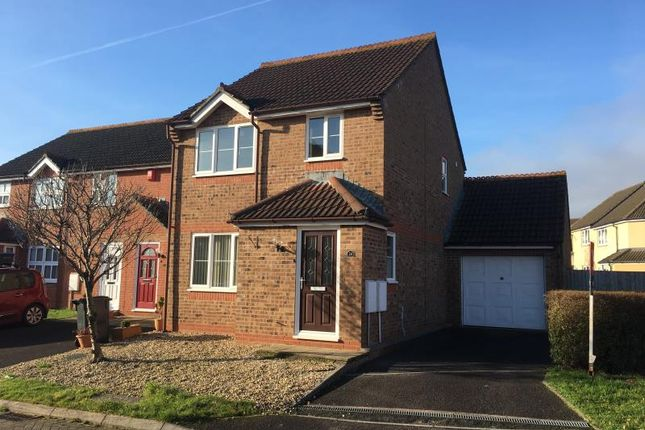 Thumbnail Semi-detached house to rent in Sheldon Court, Taunton, Somerset