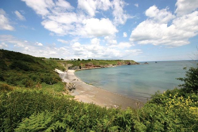 Thumbnail Detached house for sale in Tidal Reach, St Marys Hill, Brixham, Devon