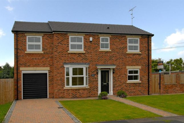 Thumbnail Detached house to rent in Sandwath Lane, Church Fenton, Tadcaster