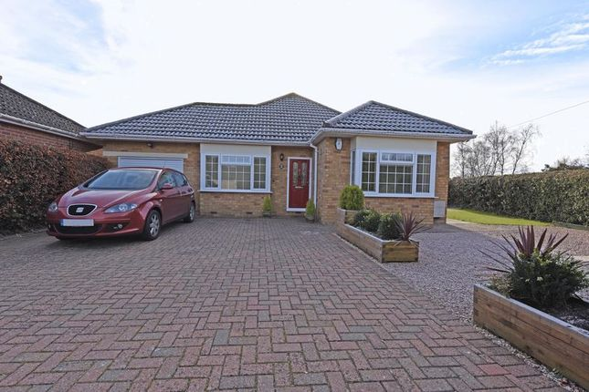 Thumbnail Detached bungalow for sale in Church Road, Pamber Heath, Tadley