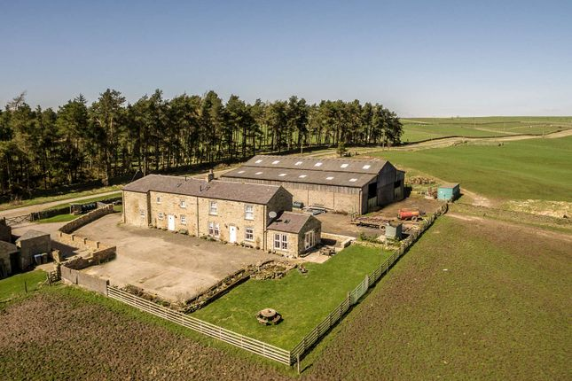 Thumbnail Farm for sale in Greenfield Farm, Rowley, County Durham