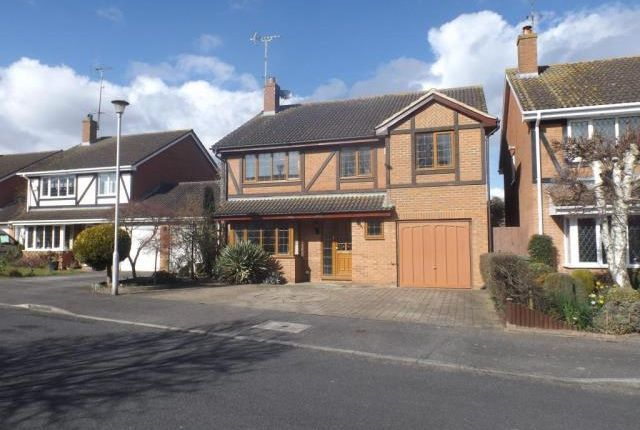 Thumbnail Detached house to rent in Binfield, Berkshire