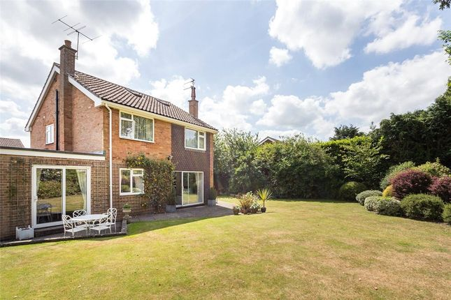 4 bed detached house to rent in Sunley Close, Wash Common, Newbury, Berkshire RG14