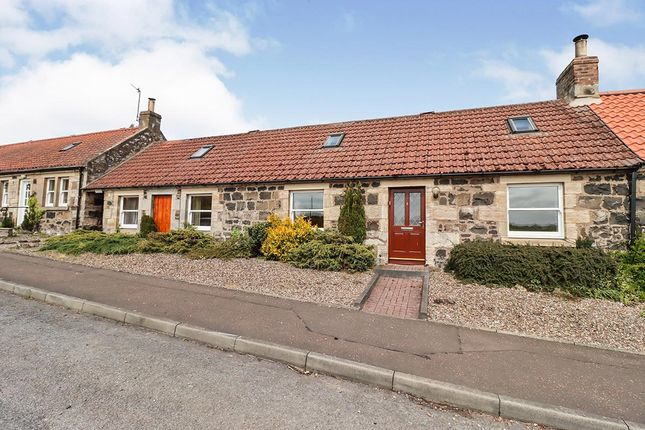 Thumbnail Bungalow for sale in The Row, Letham, Cupar, Fife