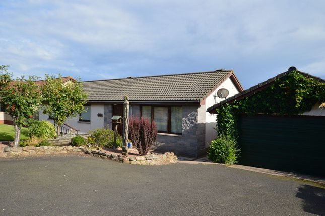 Thumbnail Detached bungalow for sale in Gillsland, Eyemouth, Berwickshire, Scottish Borders