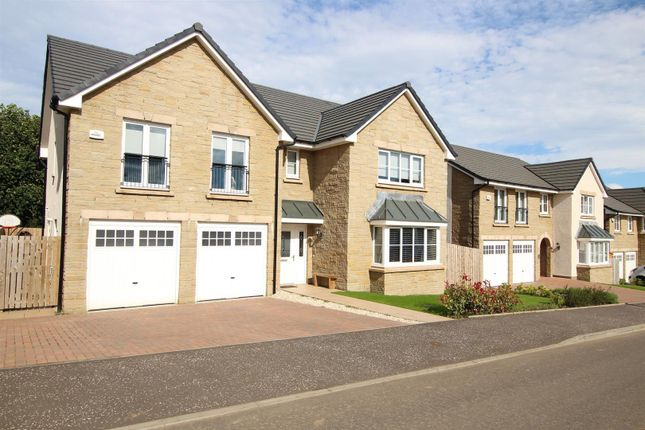 Thumbnail Detached house for sale in Healds Drive, Strathaven