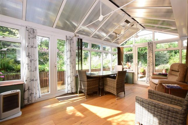 Thumbnail 2 bed semi-detached bungalow for sale in Dellfield, Froxfield, Petersfield, Hampshire