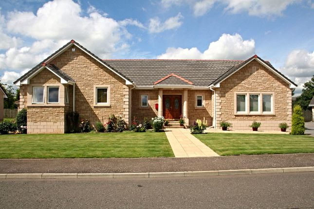 Thumbnail Detached bungalow for sale in Kellieside Park, Kinross
