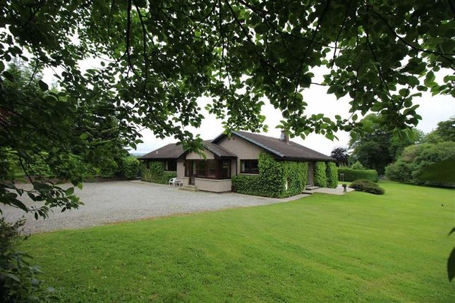 Thumbnail Detached bungalow for sale in Kiltarlity, Beauly