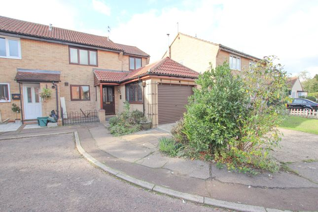 Thumbnail Semi-detached house to rent in Gazelle Court, Highwoods, Colchester
