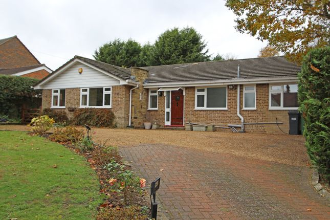 Thumbnail Detached bungalow to rent in High Road, Chipstead