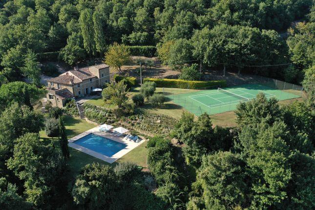 Thumbnail Farmhouse for sale in Falsano, Cortona, Arezzo, Tuscany, Italy
