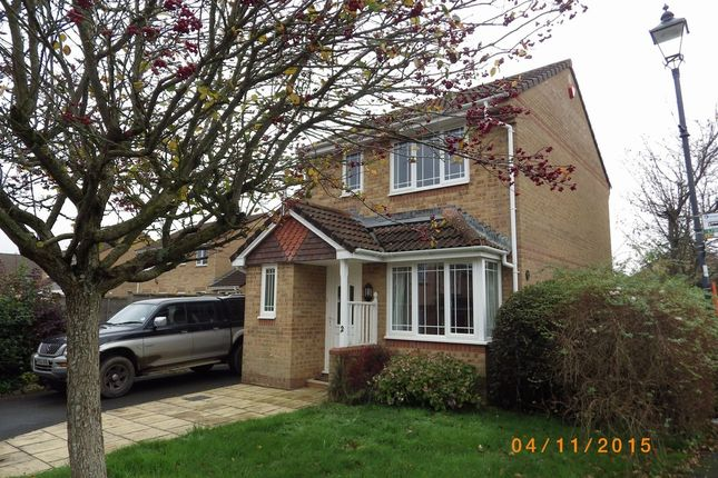 Thumbnail Detached house to rent in Wester-Moor Drive, Roundswell, Barnstaple