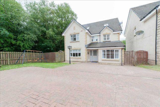 Thumbnail Detached house for sale in Pembury Crescent, Hamilton