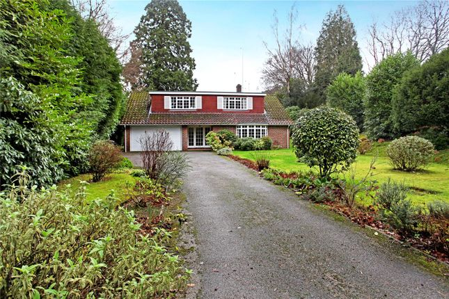 Thumbnail Detached house for sale in Grayswood Road, Haslemere, Surrey