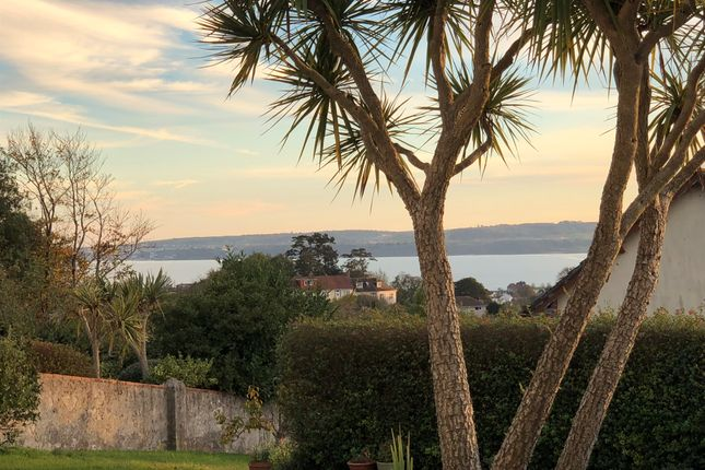 Thumbnail Detached bungalow for sale in Audley Avenue, Torquay