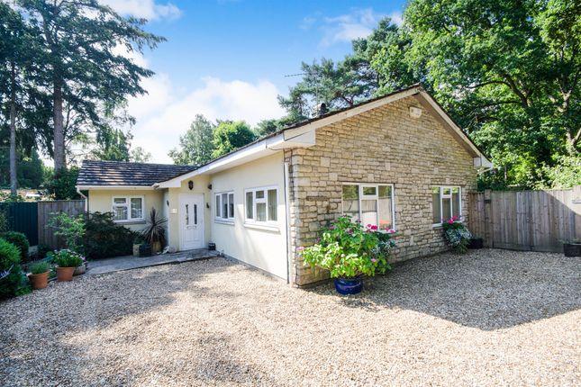 Thumbnail Detached bungalow for sale in Sandford Road, Sandford, Wareham