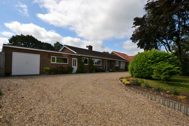 Thumbnail Detached bungalow for sale in Norwich Road, Clint Green, Yaxham