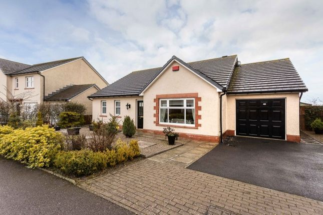 Thumbnail Bungalow for sale in West Park, Inverbervie, Montrose, Angus