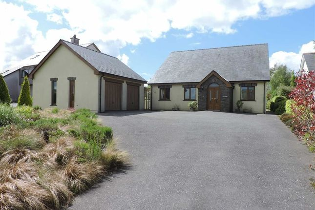 Thumbnail Detached bungalow for sale in Dihewyd, Lampeter
