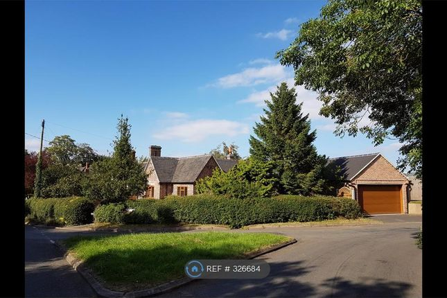 Thumbnail Bungalow to rent in Sunnyside Main Street, Atherstone