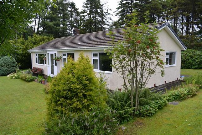 3 bed detached bungalow for sale in Mydroilyn, Lampeter