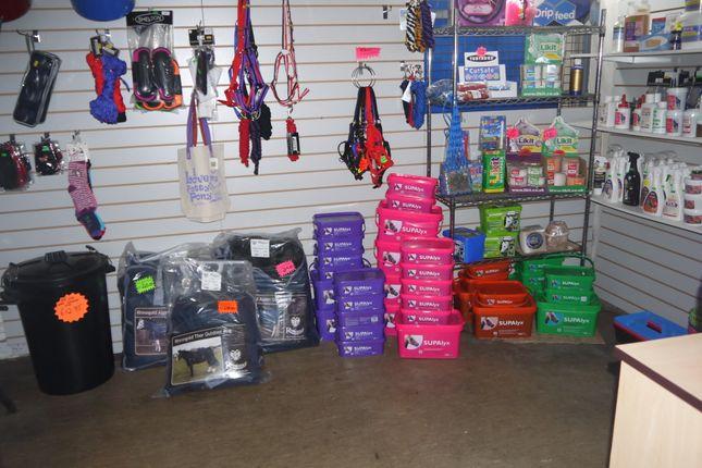 Photo 2 of Pets, Supplies & Services BD21, Bradford