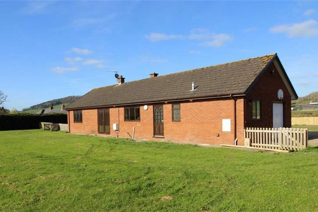 Thumbnail Bungalow to rent in Llancayo, Usk