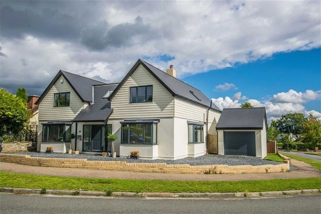 Thumbnail Detached house for sale in Carnaby Road, Broxbourne, Hertfordshire