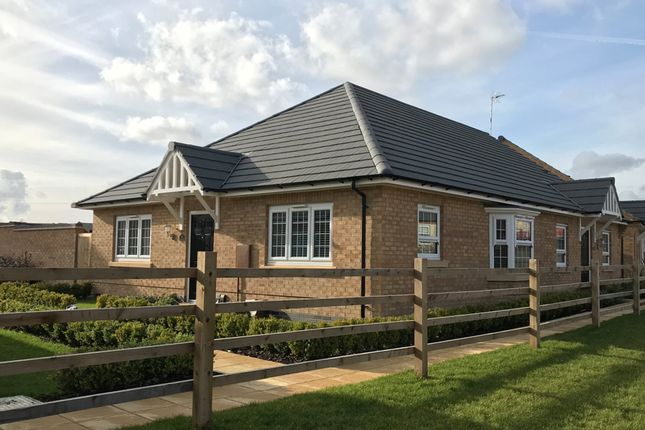 "Thumbnail Bungalow for sale in ""Burleigh"" at Forest House Lane, Leicester Forest East, Leicester"