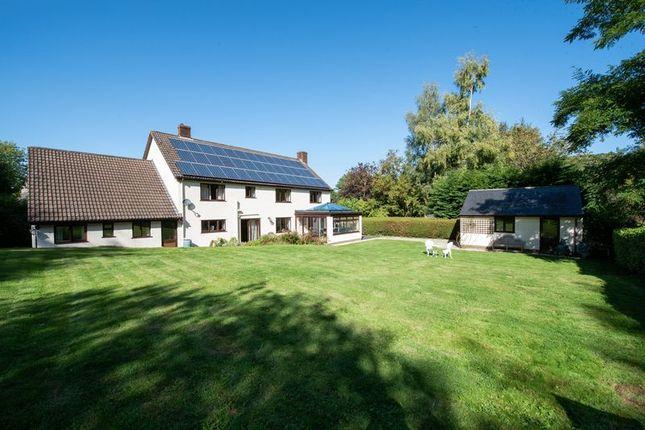 Garden of Monksilver, Taunton TA4