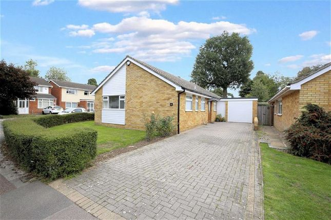 Thumbnail Detached bungalow for sale in Egg Hall, Epping, Essex