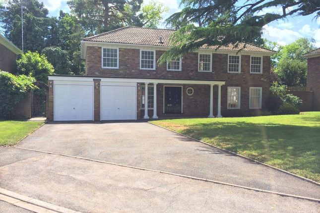 Thumbnail Detached house to rent in Redcourt, Pyrford, Woking