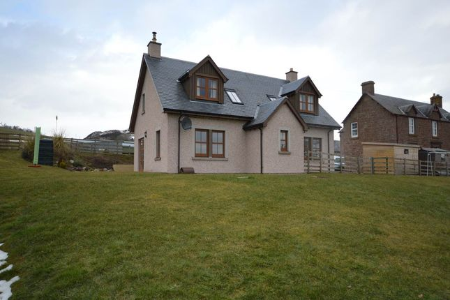 Thumbnail Detached house to rent in Alyth, Blairgowrie