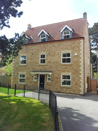 Thumbnail Detached house to rent in Doe Close, Witham St Hughes