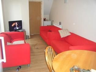 Thumbnail Terraced house to rent in Richard Street, Cardiff