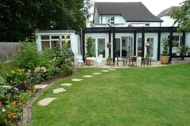 Thumbnail Detached house to rent in Albert Road, Englefield Green, Egham