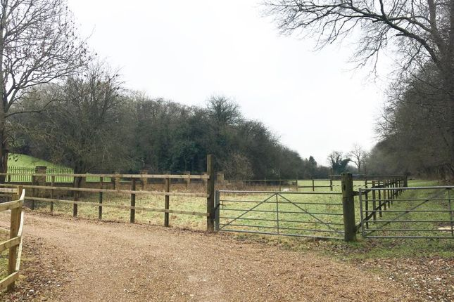 Thumbnail Land for sale in Land Off Birdhouse Lane, Downe, Orpington, Kent