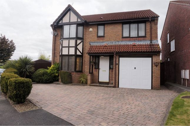 Thumbnail Detached house for sale in The Meadows, Cardiff