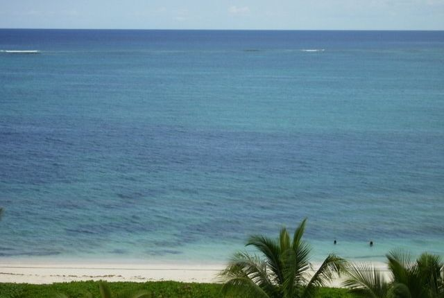 Indigo, West Bay Street, Nassau/New Providence, The Bahamas