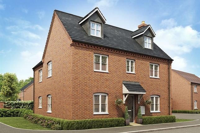 "Thumbnail Detached house for sale in ""The Balderton"" at Lavender Way, Newark"