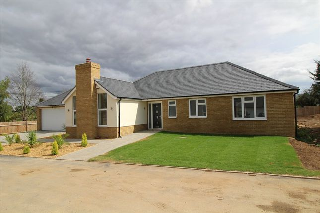 Thumbnail Detached bungalow for sale in Hutton Grange, North Drive, Hutton, Brentwood, Essex