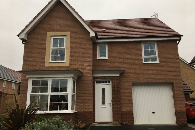 Thumbnail Detached house to rent in Plum Tree Close, Big Lane, Clarborough, Retford