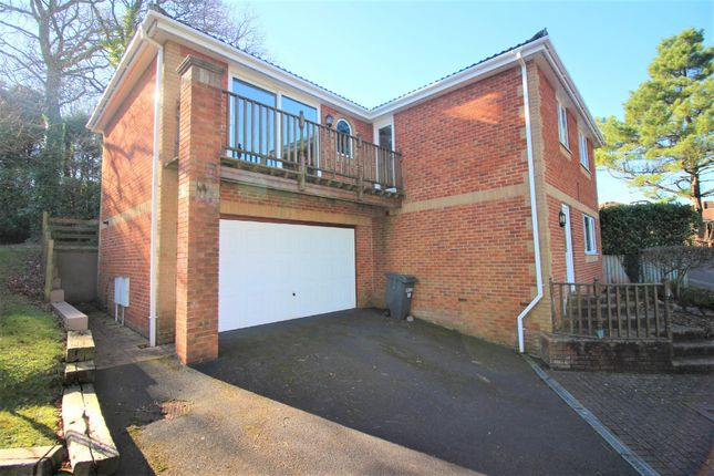Thumbnail Detached house for sale in Catherine Crescent, Paignton