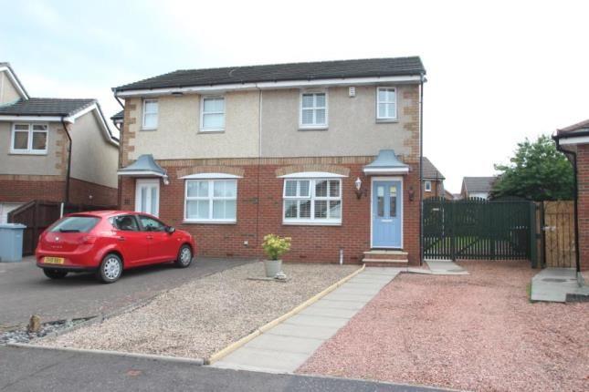 Thumbnail Semi-detached house for sale in Pillans Court, Hamilton, South Lanarkshire