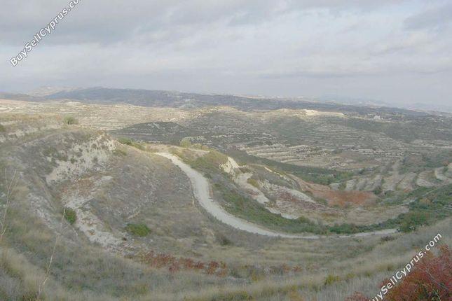 Pachna, Limassol, Cyprus