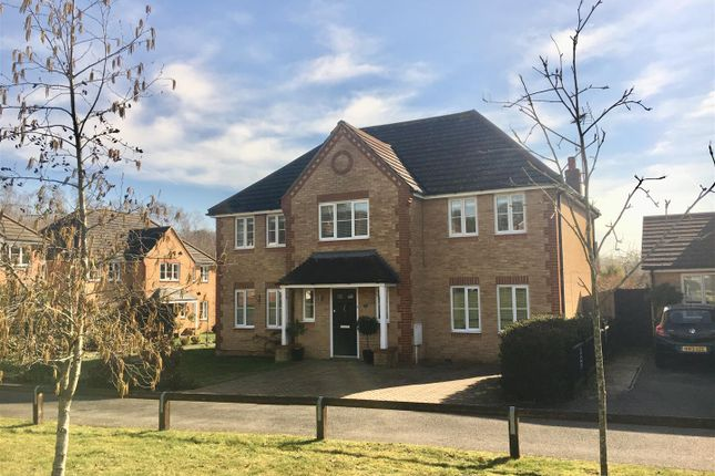 Thumbnail Detached house for sale in Blossom Lane, Ashford