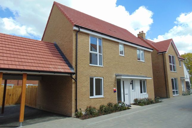 Thumbnail Detached house to rent in Arthur Maybury Close, Ashford