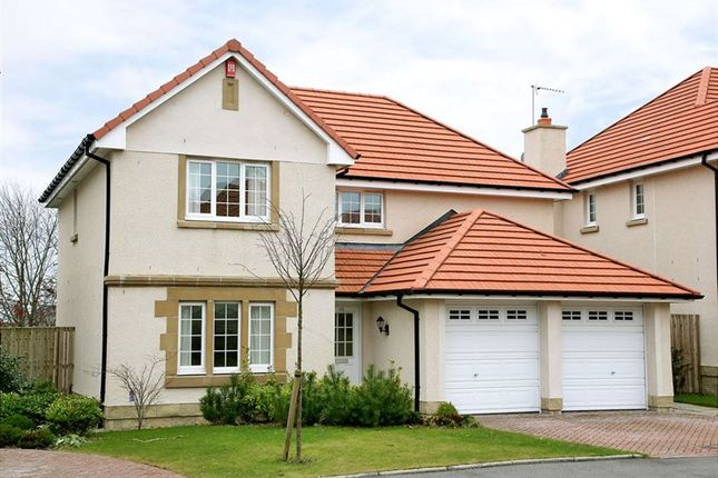 Thumbnail Detached house to rent in Hammerman Drive, Aberdeen